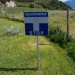 Austrian English